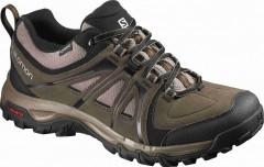Pánská treková obuv Salomon EVASION GTXR ABSOLUTE BROWN-X 42