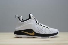 Pánské basketbalové boty boty Nike ZOOM WITNESS