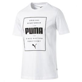 79fae93e8cdd Pánské tričko Puma RBR Graphic Tee light gray hea
