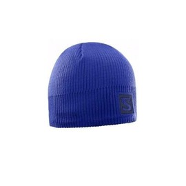 Čepice LOGO BEANIE Surf The We